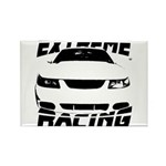 Racing Mustang 99 2004 Rectangle Magnet (10 pack)