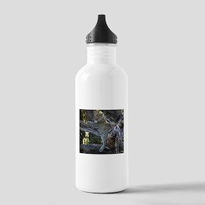 Leopard Cub Stainless Water Bottle 1.0L