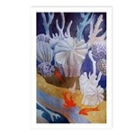 Acapulco Marine Postcards (Package of 8)