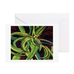 Cactus Greeting Cards (Pk of 10)