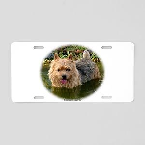 Norwich Terrier 9Y235D-087 Aluminum License Plate