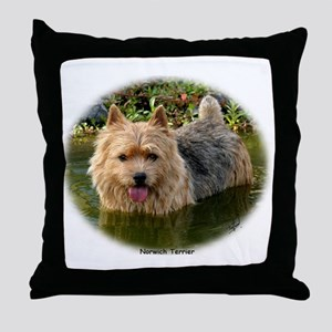 Norwich Terrier 9Y235D-087 Throw Pillow