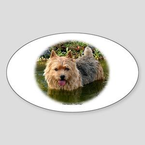 Norwich Terrier 9Y235D-087 Sticker (Oval)