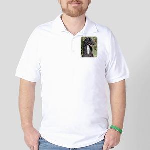 Afghan Hound AA017D-101 Golf Shirt