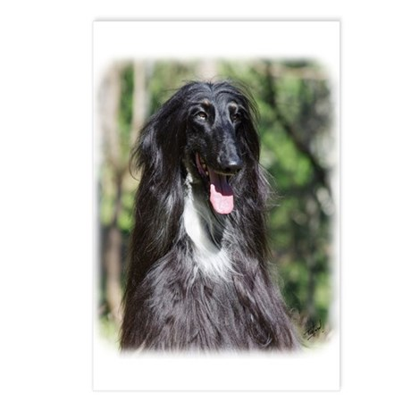 Afghan Hound AA017D-119 Postcards (Package of 8)