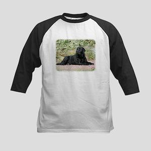 Labrador Retriever 9Y262D-047 Kids Baseball Jersey