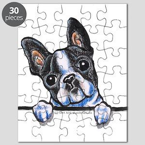 Curious Boston Puzzle
