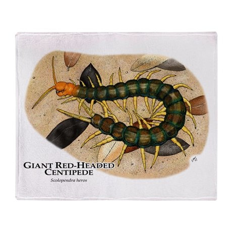 Giant Red-Headed Centipede Throw Blanket