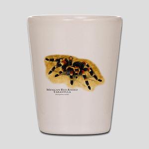 Mexican Red-Kneed Tarantula Shot Glass