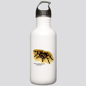 Mexican Red-Kneed Tarantula Stainless Water Bottle