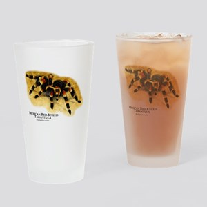 Mexican Red-Kneed Tarantula Drinking Glass