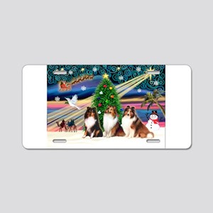 Xmas Magic/3 Shelties (T3) Aluminum License Plate