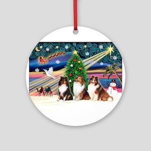 Xmas Magic/3 Shelties (T3) Ornament (Round)