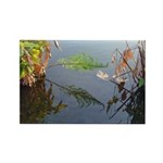 Fireflag Water Reflections - Rectangle Magnet