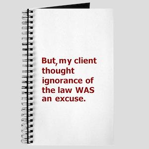 Client Ignorance 2 Journal