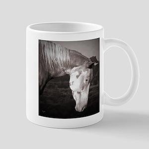 Paint Horse in the Badlands Mug
