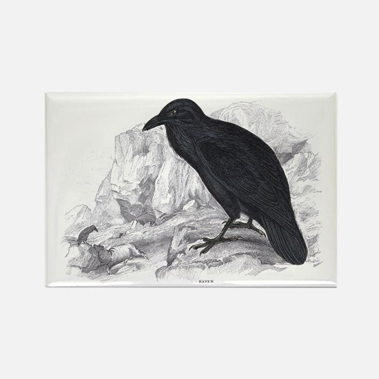 Black Raven Bird Rectangle Magnet