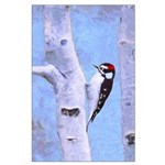 Downy Woodpecker Large Poster