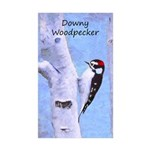 Downy Woodpecker Sticker (Rectangle 10 pk)