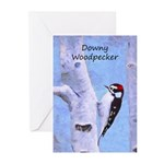 Downy Woodpecker Greeting Cards (Pk of 20)