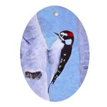 Downy Woodpecker Oval Ornament