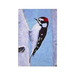 Downy Woodpecker Rectangle Magnet (100 pack)