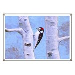 Downy Woodpecker Banner