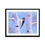 Downy Woodpecker Framed Panel Print