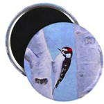 Downy Woodpecker Magnet