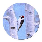 Downy Woodpecker Round Car Magnet