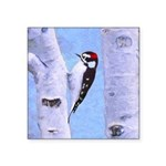 Downy Woodpecker Square Sticker 3