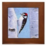 Downy Woodpecker Framed Tile