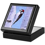 Downy Woodpecker Keepsake Box