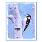 Downy Woodpecker Small Poster
