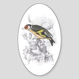 Goldfinch Bird Oval Sticker