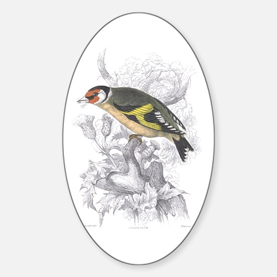 Goldfinch Bird Oval Decal