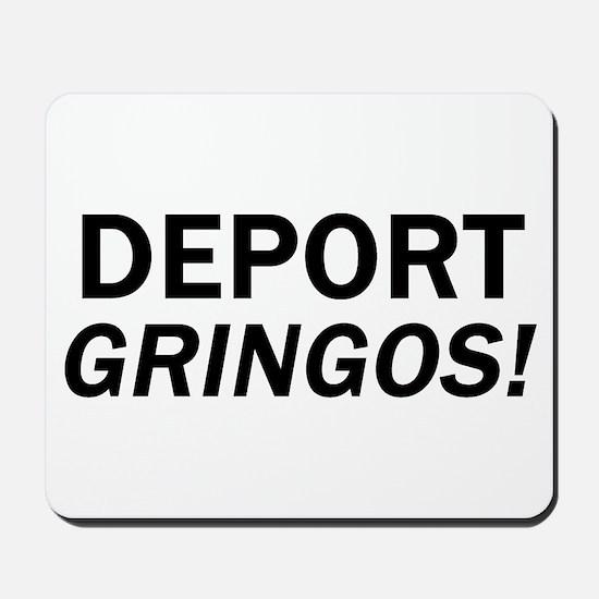 Deport Gringos Mousepad