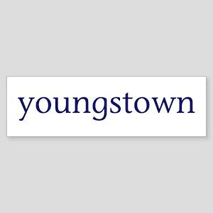 Youngstown Sticker (Bumper)