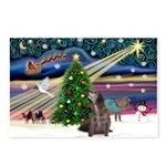 Xmas Magic/Pony & Dog Postcards (Package of 8)