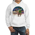 XmasMagic/Shetland Pony Hooded Sweatshirt