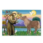 StFrancis/Shetland Pony Postcards (Package of 8)