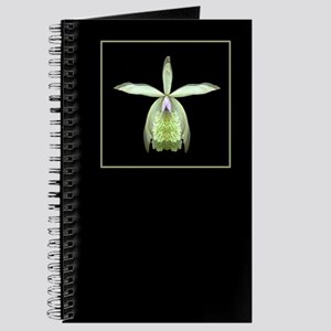 Orchid Epi Journal