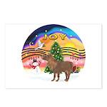 XmasMusic2-Shetland Pony Postcards (Package of 8)