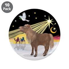 XmasDove-Shetland Pony 3.5
