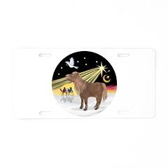 XmasDove-Shetland Pony Aluminum License Plate