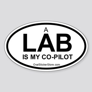 Lab Co-Pilot Oval Sticker