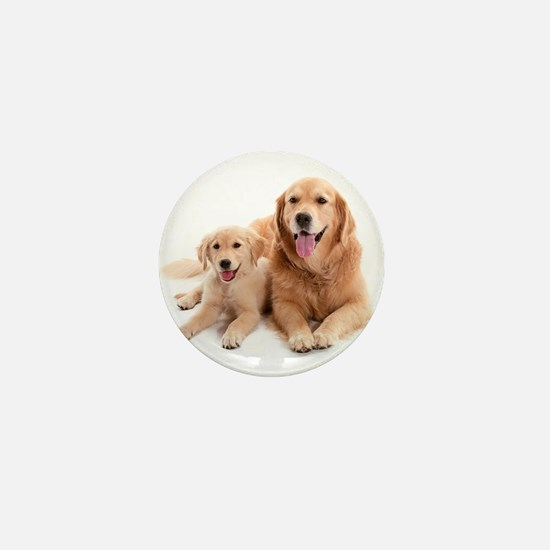 Golden retriever buddies Mini Button
