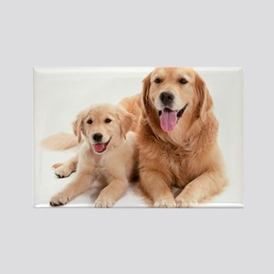 Golden retriever buddies Rectangle Magnet
