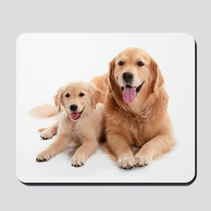 Golden retriever buddies Mousepad