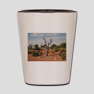 Dead Tree, Moab, UT Shot Glass